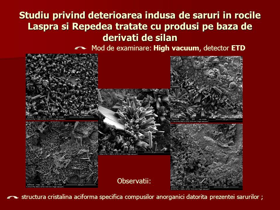 Studiu privind deterioarea indusa de saruri in rocile Laspra si Repedea tratate cu produsi pe baza de derivati de silan