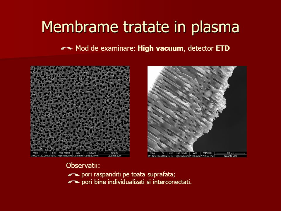 Membrame tratate in plasma