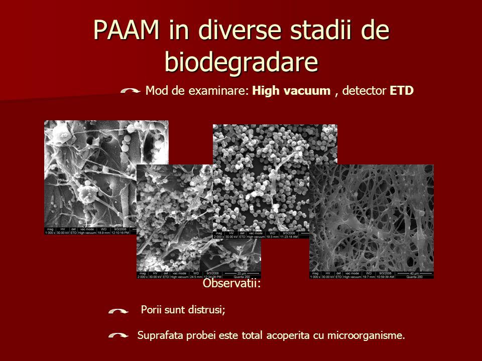 PAAM in diverse stadii de biodegradare