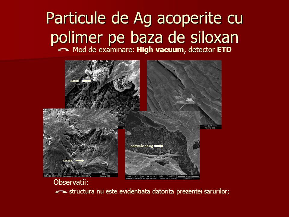 Particule de Ag acoperite cu polimer pe baza de siloxan