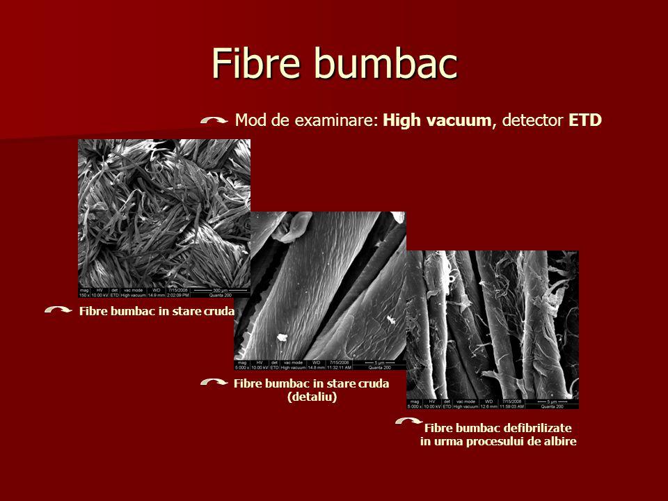 Fibre bumbac Mod de examinare: High vacuum, detector ETD