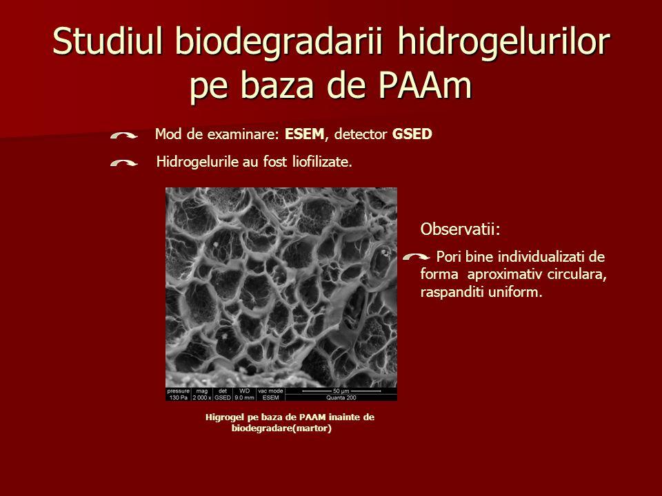 Studiul biodegradarii hidrogelurilor pe baza de PAAm