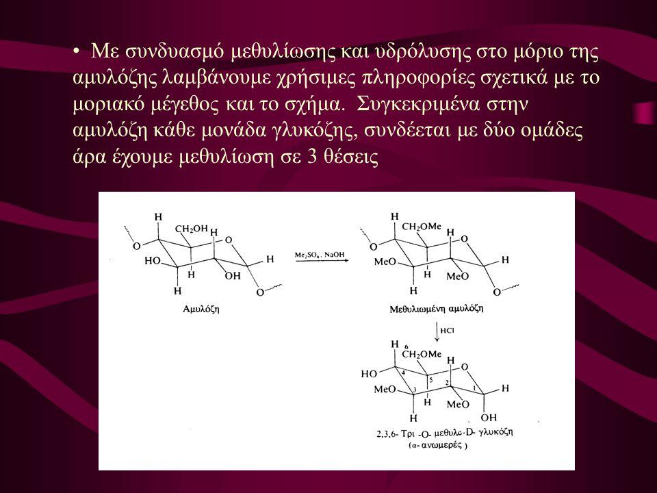 Με συνδυασμό μεθυλίωσης και υδρόλυσης στο μόριο της αμυλόζης λαμβάνουμε χρήσιμες πληροφορίες σχετικά με το μοριακό μέγεθος και το σχήμα.
