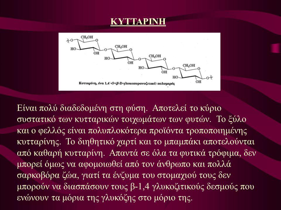 ΚΥΤΤΑΡΙΝΗ