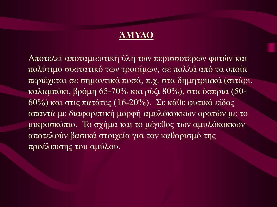 ΆΜΥΛΟ