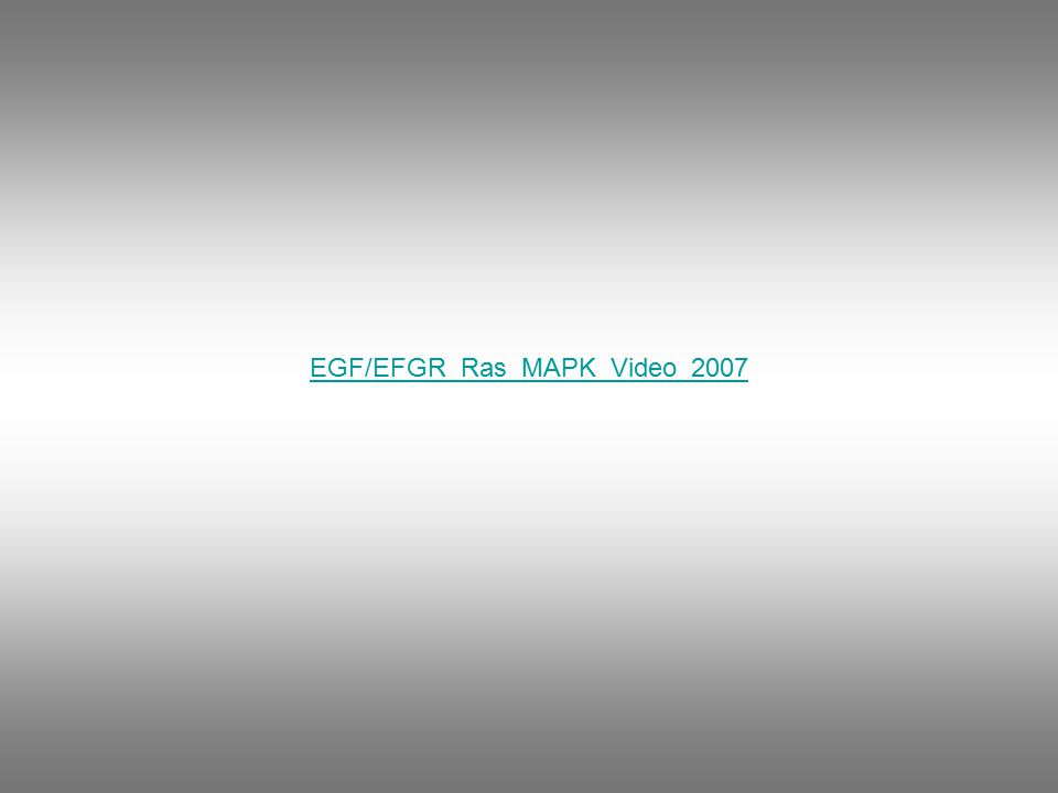 EGF/EFGR_Ras_MAPK_Video_2007
