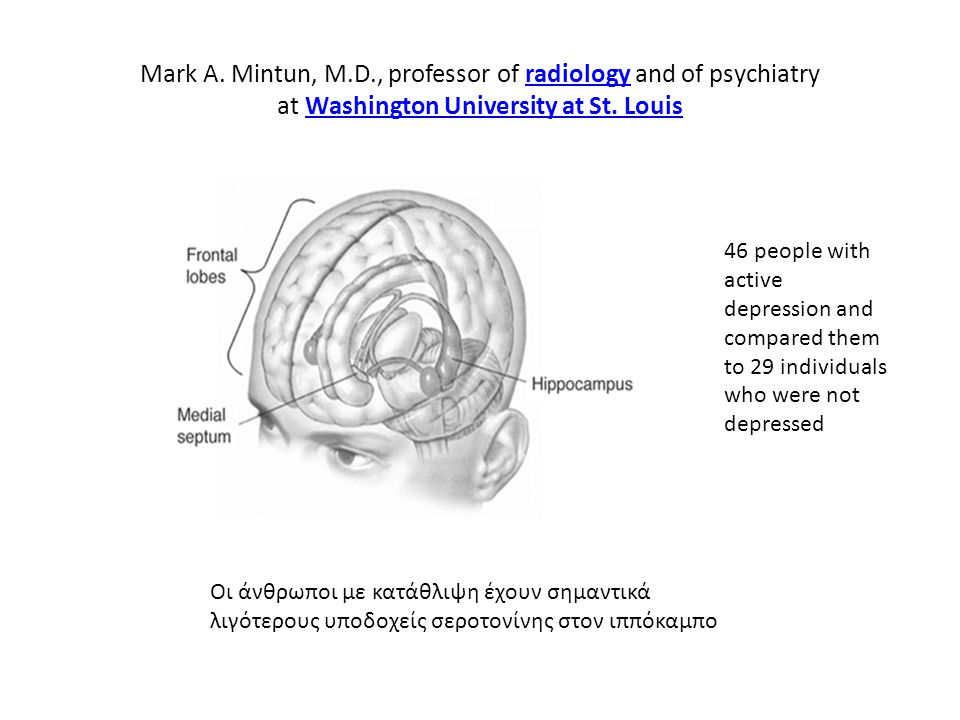 Mark A. Mintun, M.D., professor of radiology and of psychiatry at Washington University at St. Louis