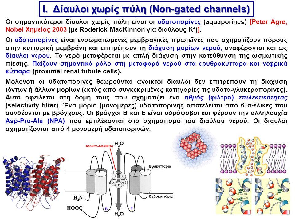 I. Δίαυλοι χωρίς πύλη (Non-gated channels)