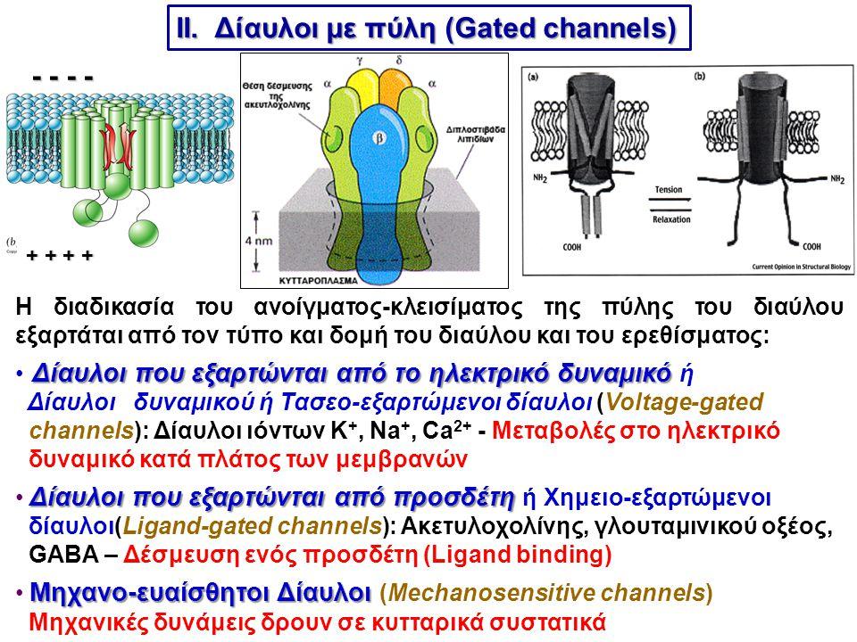 ΙΙ. Δίαυλοι με πύλη (Gated channels)
