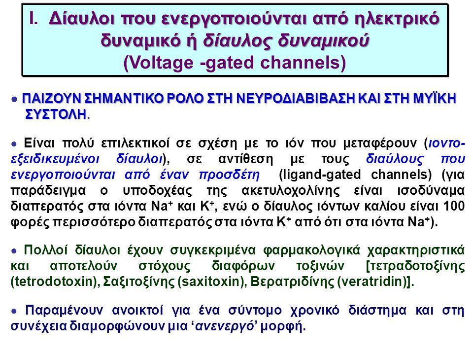 I. Δίαυλοι που ενεργοποιούνται από ηλεκτρικό δυναμικό ή δίαυλος δυναμικού (Voltage -gated channels)