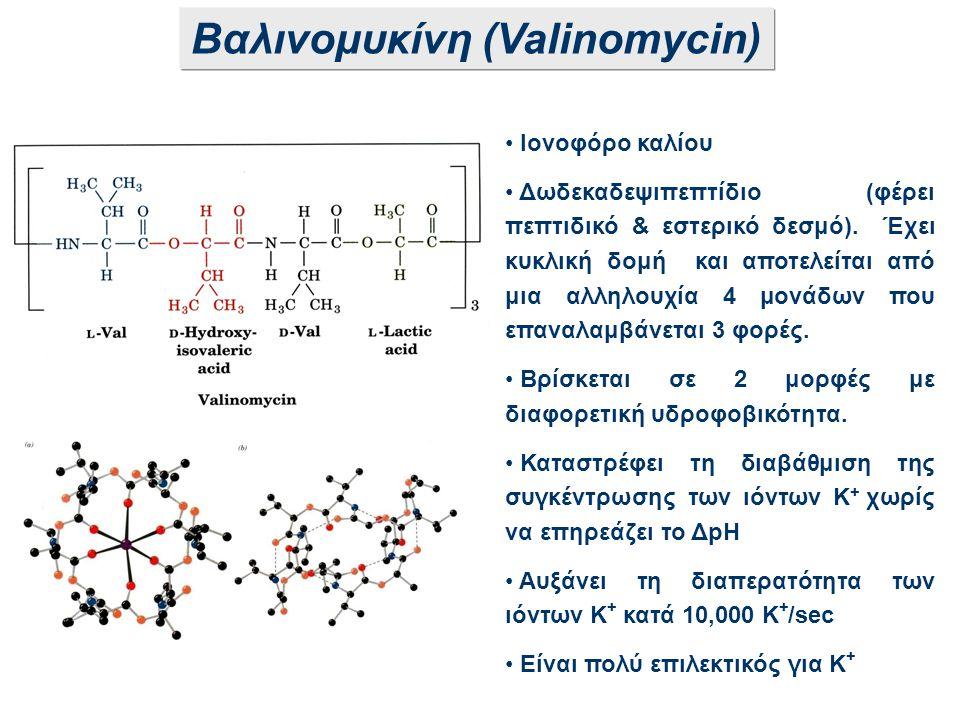 Βαλινομυκίνη (Valinomycin)