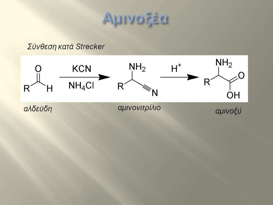 Αμινοξέα Σύνθεση κατά Strecker αλδεϋδη αμινονιτρίλιο αμινοξύ