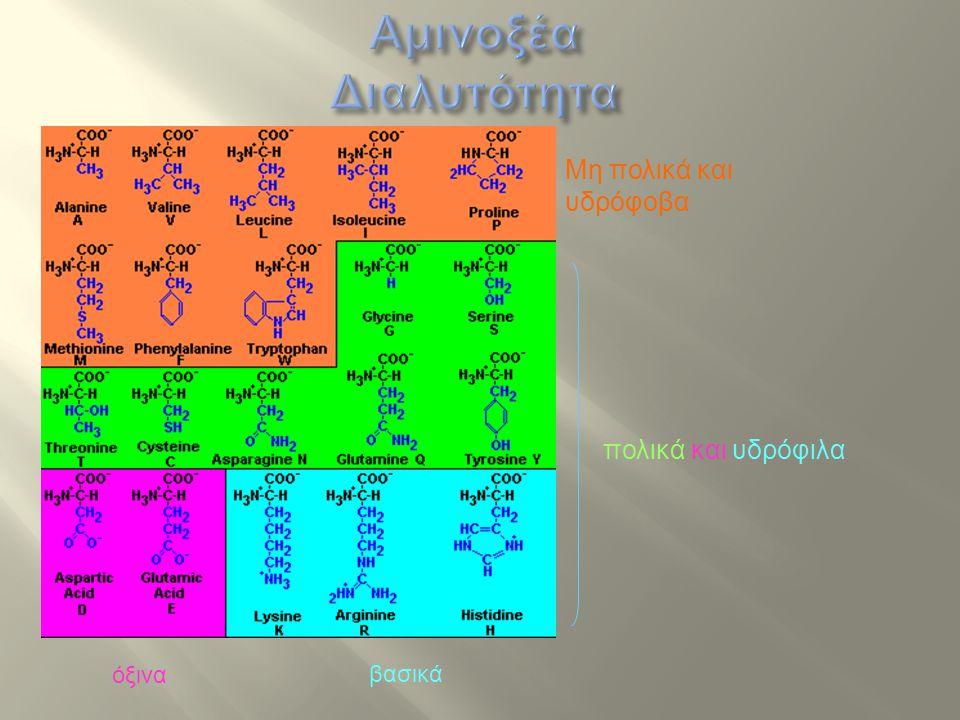 Αμινοξέα Διαλυτότητα Μη πολικά και υδρόφοβα πολικά και υδρόφιλα όξινα