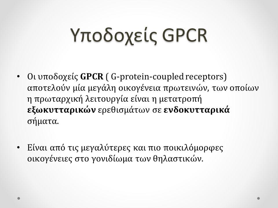 Υποδοχείς GPCR