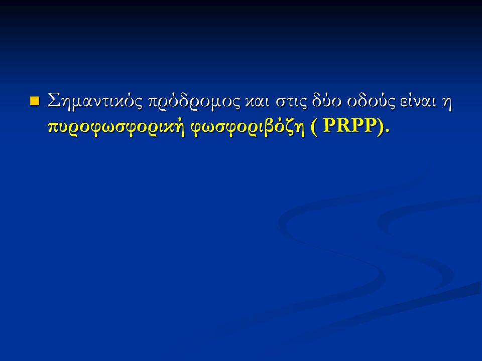 Σημαντικός πρόδρομος και στις δύο οδούς είναι η πυροφωσφορική φωσφοριβόζη ( PRPP).