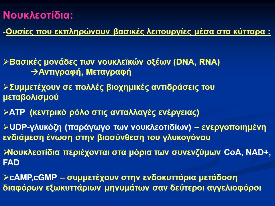 Νουκλεοτίδια: Ουσίες που εκπληρώνουν βασικές λειτουργίες μέσα στα κύτταρα : Βασικές μονάδες των νουκλεïκών οξέων (DNA, RNA) Αντιγραφή, Μεταγραφή.