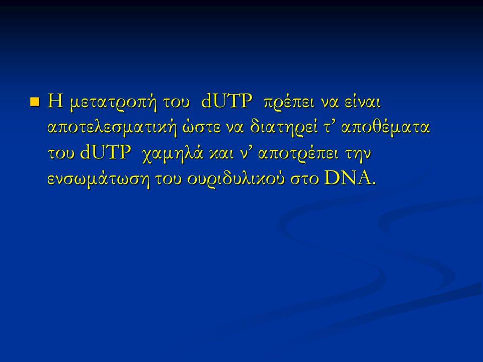 Η μετατροπή του dUTP πρέπει να είναι αποτελεσματική ώστε να διατηρεί τ' αποθέματα του dUTP χαμηλά και ν' αποτρέπει την ενσωμάτωση του ουριδυλικού στο DNA.
