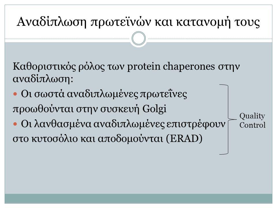 Αναδίπλωση πρωτεϊνών και κατανομή τους