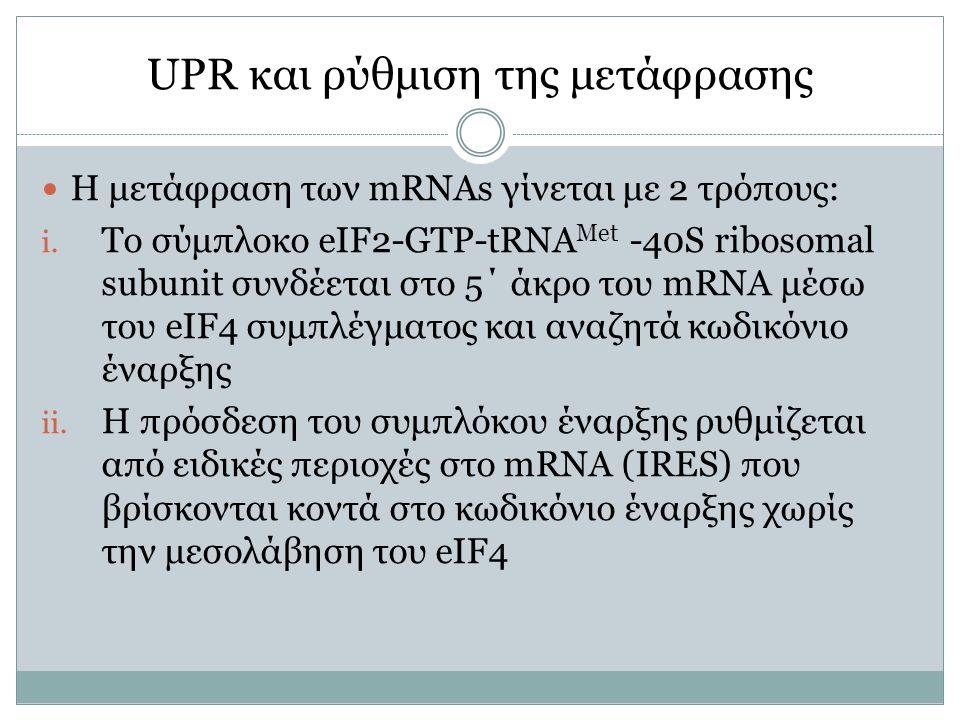 UPR και ρύθμιση της μετάφρασης