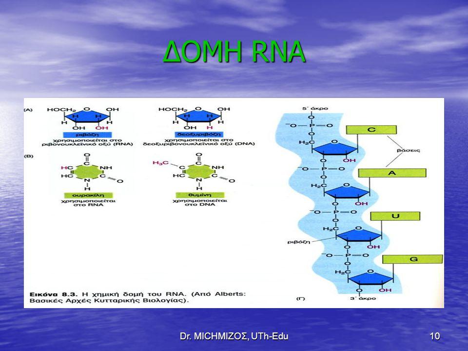 ΔΟΜΗ RNA Dr. ΜΙCHΜΙΖΟΣ, UTh-Edu