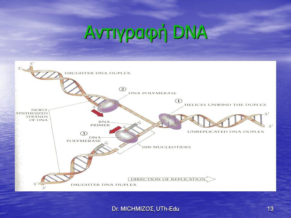 Αντιγραφή DNA Dr. ΜΙCHΜΙΖΟΣ, UTh-Edu