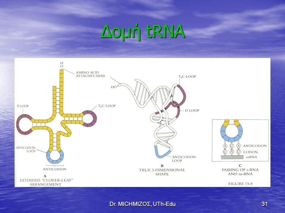 Δομή tRNA Dr. ΜΙCHΜΙΖΟΣ, UTh-Edu