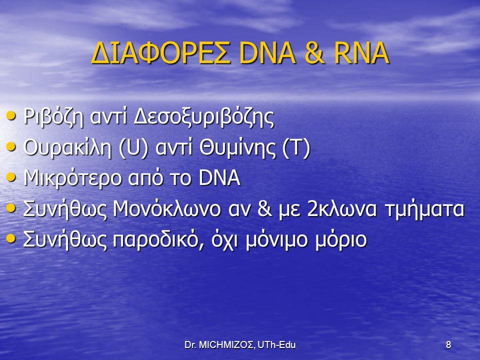 ΔΙΑΦΟΡΕΣ DNA & RNA Ριβόζη αντί Δεσοξυριβόζης