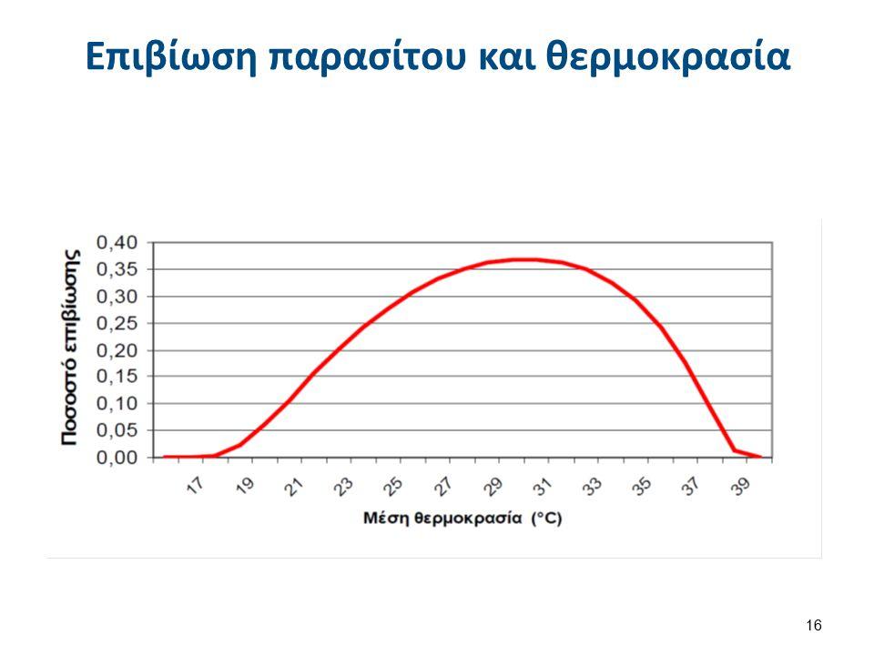 Κύκλος ζωης Malaria Life Cycle of the Malaria Parasite , από CFCF διαθέσιμο ως κοινό κτήμα