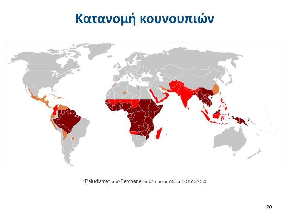 Κουνούπια ως διαβιβαστές
