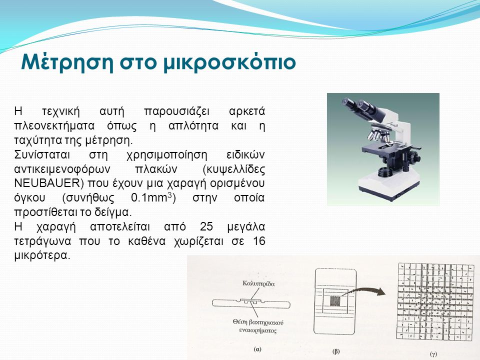 Μέτρηση στο μικροσκόπιο