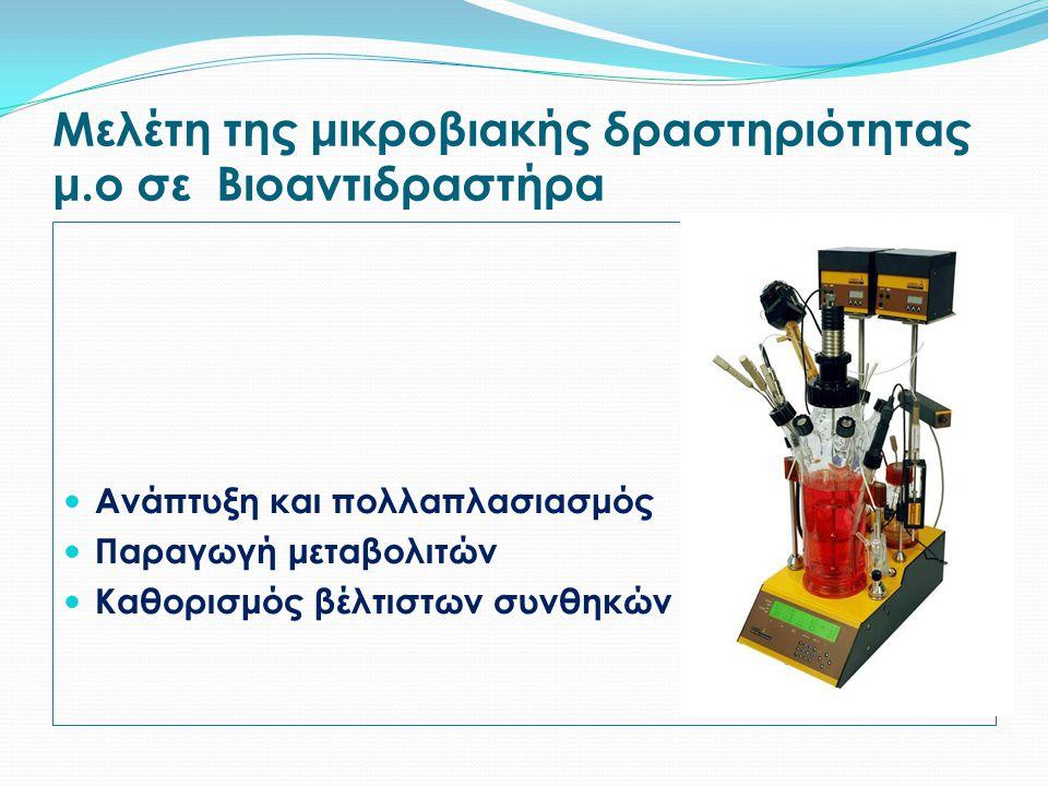 Μελέτη της μικροβιακής δραστηριότητας μ.ο σε Βιοαντιδραστήρα