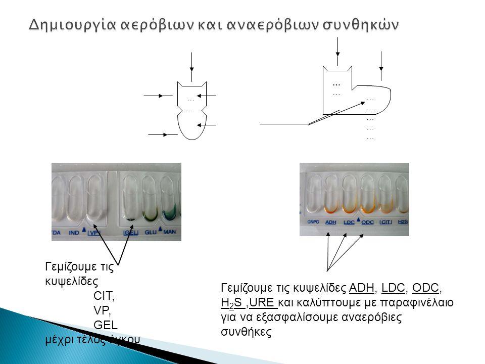 Δημιουργία αερόβιων και αναερόβιων συνθηκών