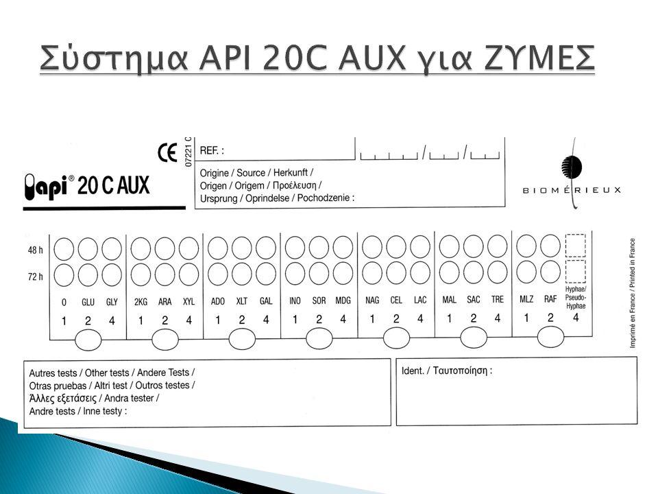 Σύστημα ΑPI 20C AUX για ΖΥΜΕΣ