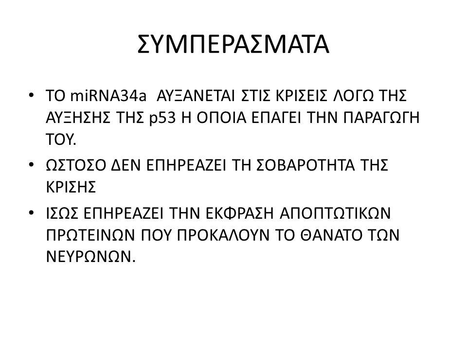 ΣΥΜΠΕΡΑΣΜΑΤΑ ΤΟ miRNA34a ΑΥΞΑΝΕΤΑΙ ΣΤΙΣ ΚΡΙΣΕΙΣ ΛΟΓΩ ΤΗΣ ΑΥΞΗΣΗΣ ΤΗΣ p53 Η ΟΠΟΙΑ ΕΠΑΓΕΙ ΤΗΝ ΠΑΡΑΓΩΓΗ ΤΟΥ.