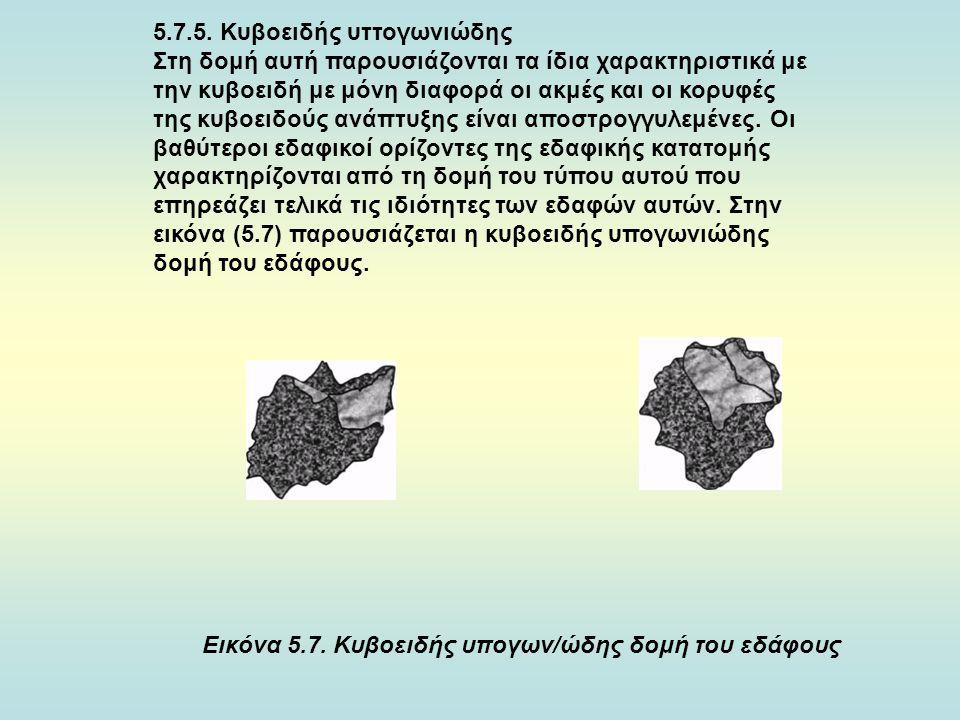 5.7.5. Κυβοειδής υττογωνιώδης