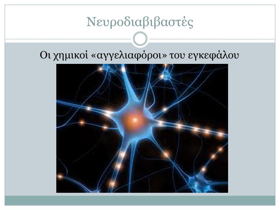 Οι χημικοί «αγγελιαφόροι» του εγκεφάλου