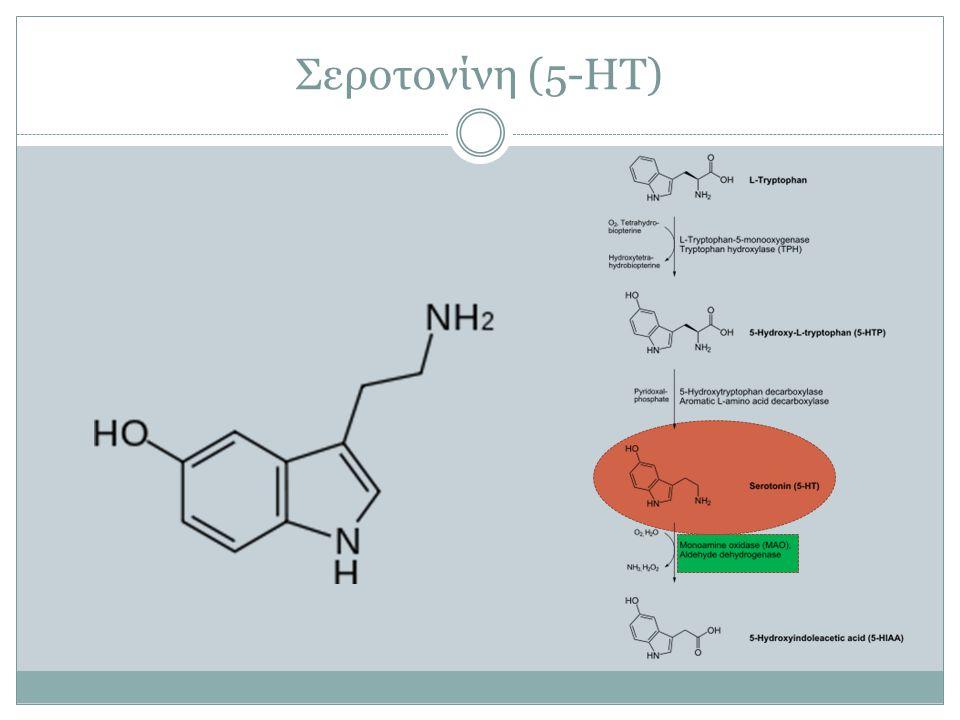 Σεροτονίνη (5-HT)