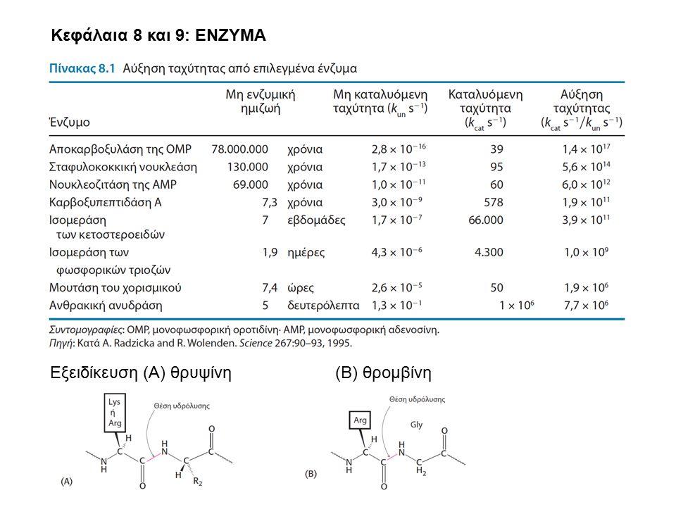 Κεφάλαια 8 και 9: ΕΝΖΥΜΑ Εξειδίκευση (Α) θρυψίνη (Β) θρομβίνη