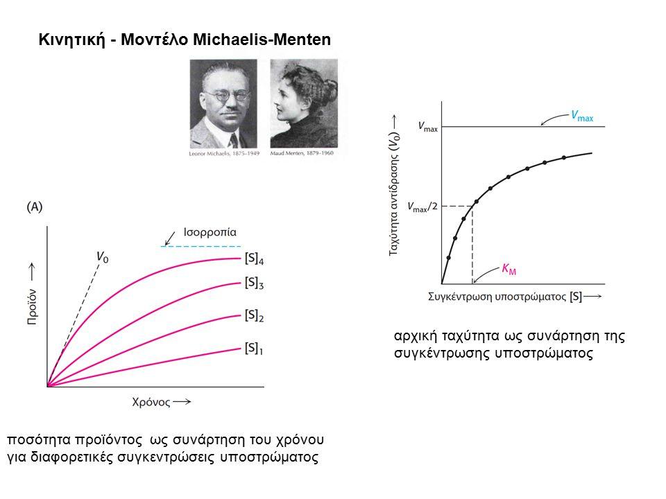 Κινητική - Μοντέλο Michaelis-Menten