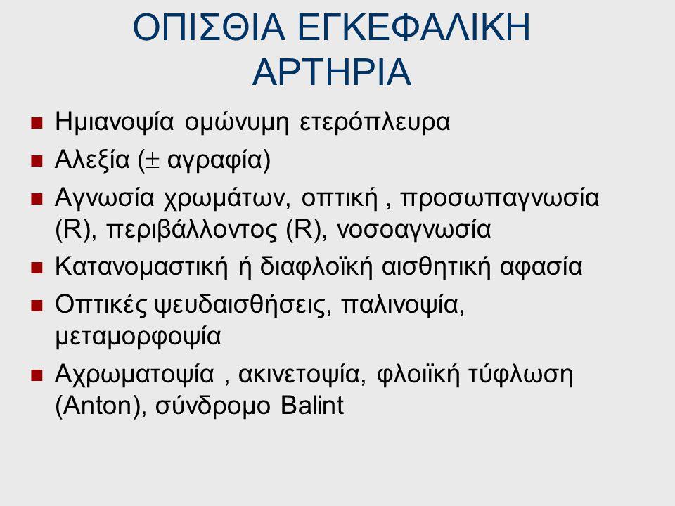 ΟΠΙΣΘΙΑ ΕΓΚΕΦΑΛΙΚΗ ΑΡΤΗΡΙΑ