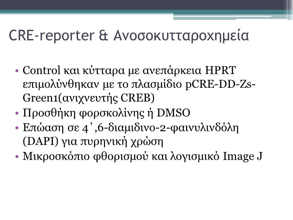 CRE-reporter & Ανοσοκυτταροχημεία