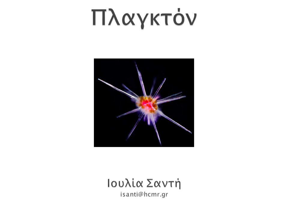 Πλαγκτόν Ιουλία Σαντή isanti@hcmr.gr