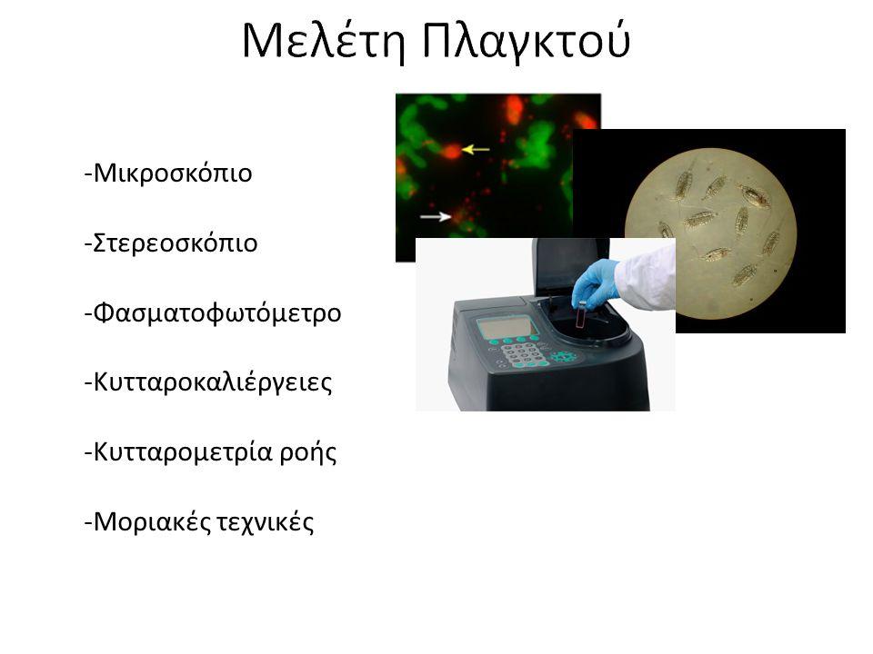 Μελέτη Πλαγκτού Μικροσκόπιο Στερεοσκόπιο Φασματοφωτόμετρο