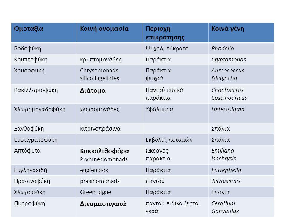 Ομοταξία Κοινή ονομασία Περιοχή επικράτησης Κοινά γένη Διάτομα