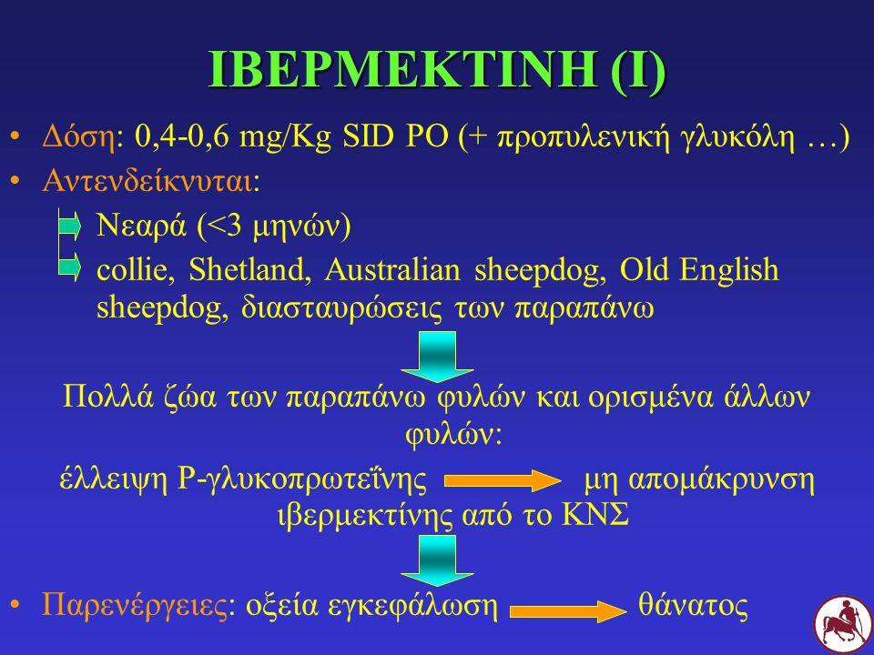 ΙΒΕΡΜΕΚΤΙΝΗ (Ι) Δόση: 0,4-0,6 mg/Kg SID PO (+ προπυλενική γλυκόλη …)
