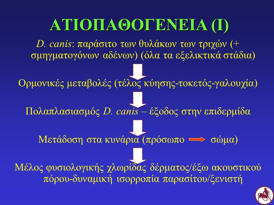 ΑΤΙΟΠΑΘΟΓΕΝΕΙΑ (Ι) D. canis: παράσιτο των θυλάκων των τριχών (+ σμηγματογόνων αδένων) (όλα τα εξελικτικά στάδια)