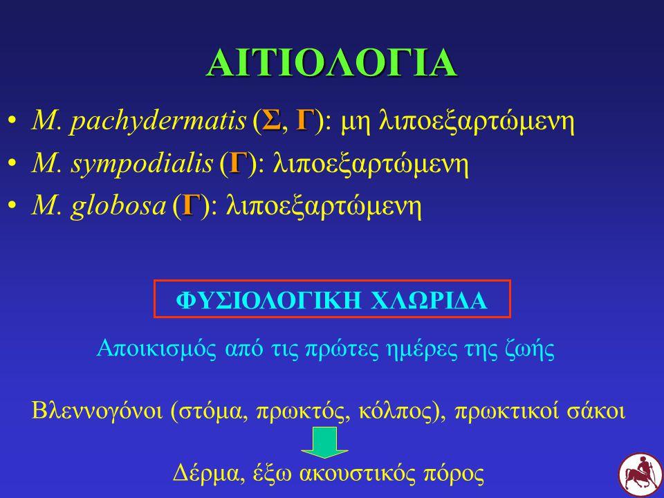 ΑΙΤΙΟΛΟΓΙΑ M. pachydermatis (Σ, Γ): μη λιποεξαρτώμενη
