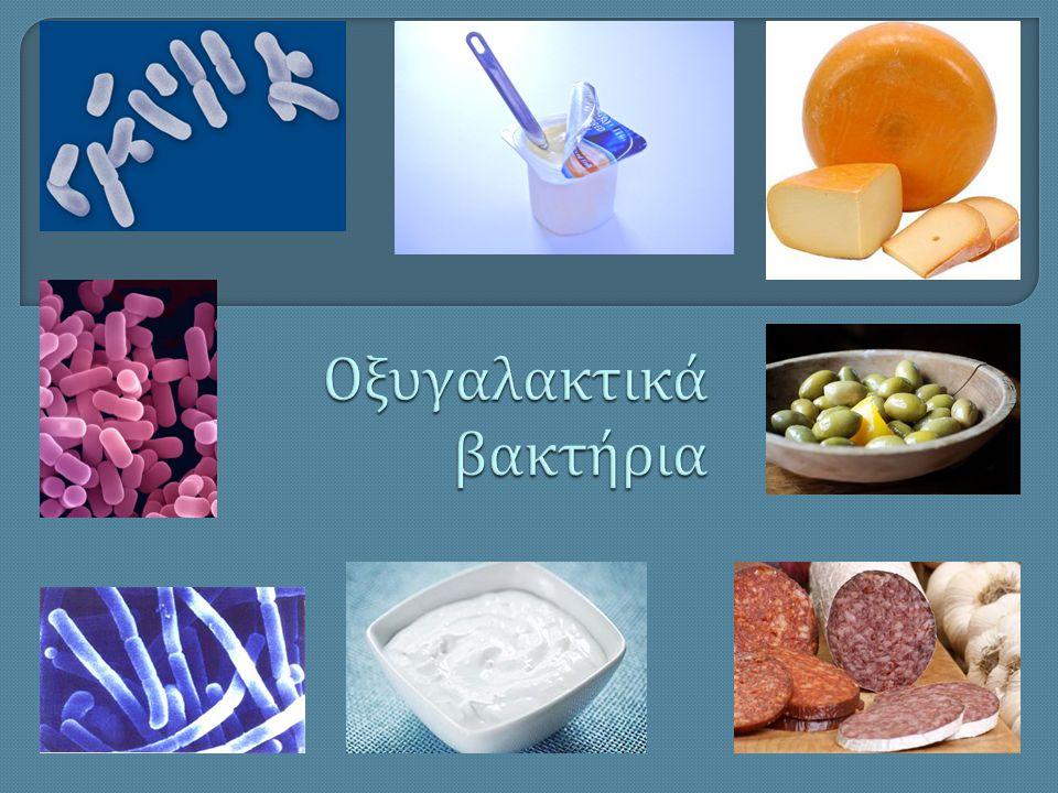 Οξυγαλακτικά βακτήρια