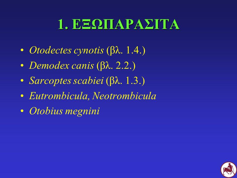 1. ΕΞΩΠΑΡΑΣΙΤΑ Otodectes cynotis (βλ. 1.4.) Demodex canis (βλ. 2.2.)