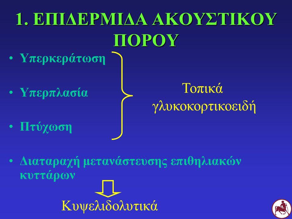 1. ΕΠΙΔΕΡΜΙΔΑ ΑΚΟΥΣΤΙΚΟΥ ΠΟΡΟΥ